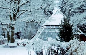 venwoude_winter